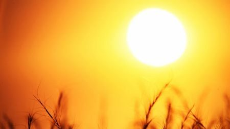Why is the Australian Sun So Dangerous?